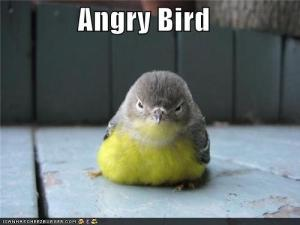 funny-anger-quotes-pictures-6